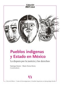 Pueblos indigenas copia