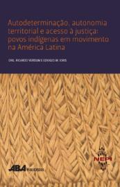 ujeres indígenas y el acceso a la justicia la perspectiva de género.png
