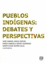 71628-pueblos-indigenas-debates-y-perspectivas
